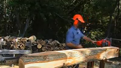 How to Plain Saw Logs into Lumber
