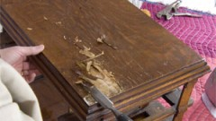 Restoring a Veneer Antique table top image